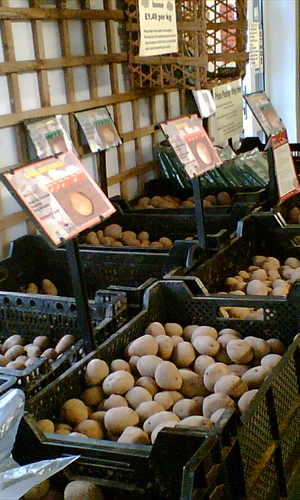 Seed Potatoes garden centre derby donington nurseries